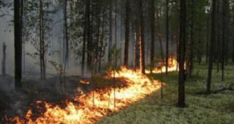 На Рівненщині на три дні надзвичайна пожежна небезпека